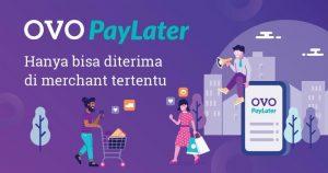 Cara Menggunakan, OVO PayLater, Bisnis, Teknologi